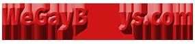 WeGayBoys.com - Live Gay Cams Logo