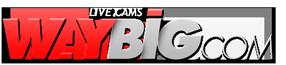 waybig.cam.  Logo